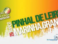 Vamos replantar a Mata Nacional de Leiria  e formar uma Bandeira Nacional Humana no próximo domingo, 25 de março