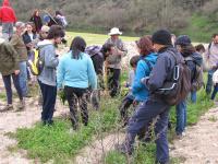 Primeiro Percurso Pedestre de 2017 | À Descoberta de Plantas Silvestres Comestíveis