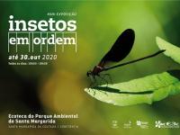 Visite  no Parque Ambiental de Santa Margarida  Insetos em Ordem
